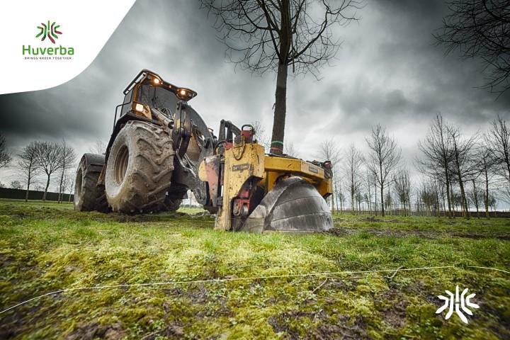 Digging XXL Trees